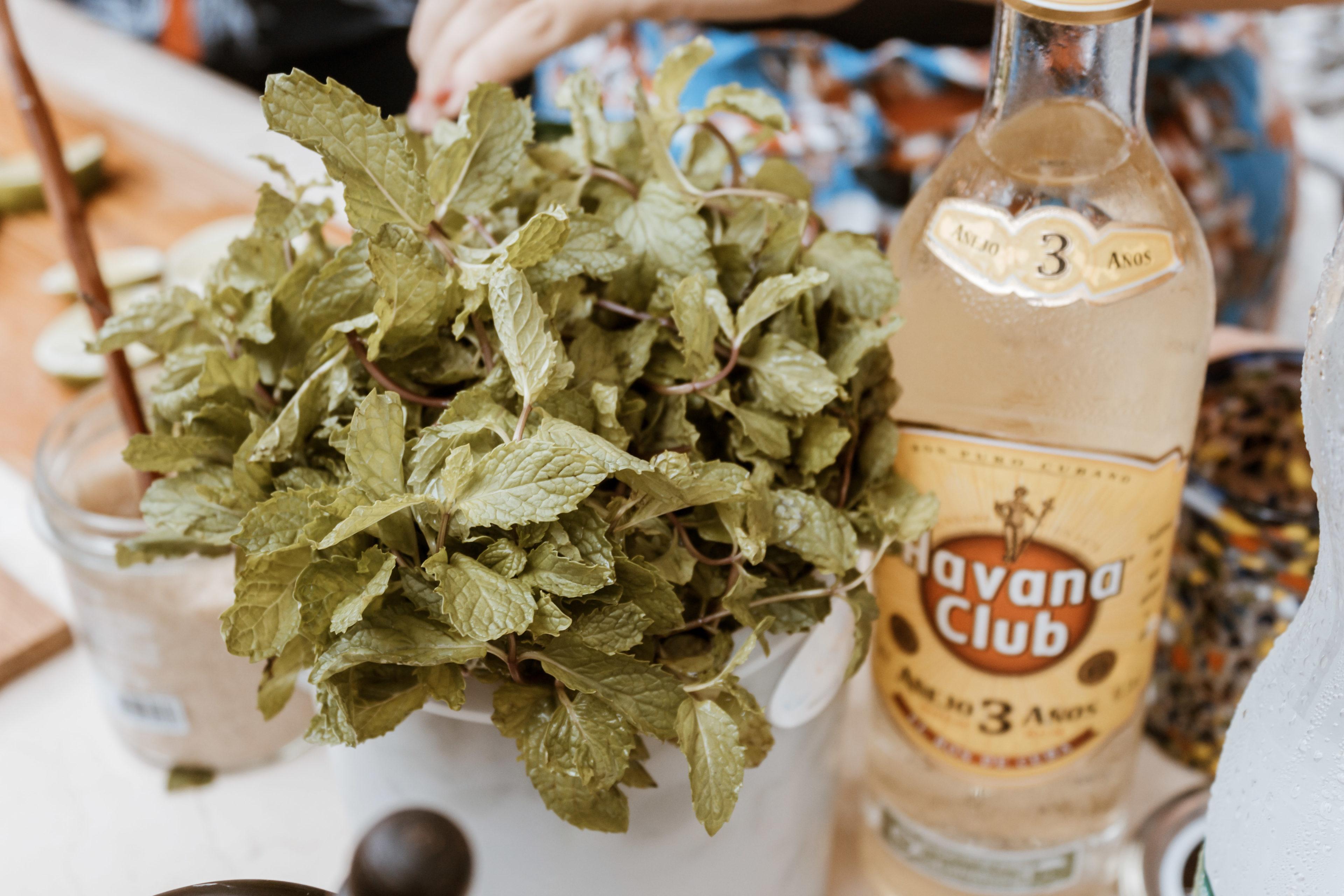 Eine Flasche Rum und Minze stehen für einen Mojito bereit.