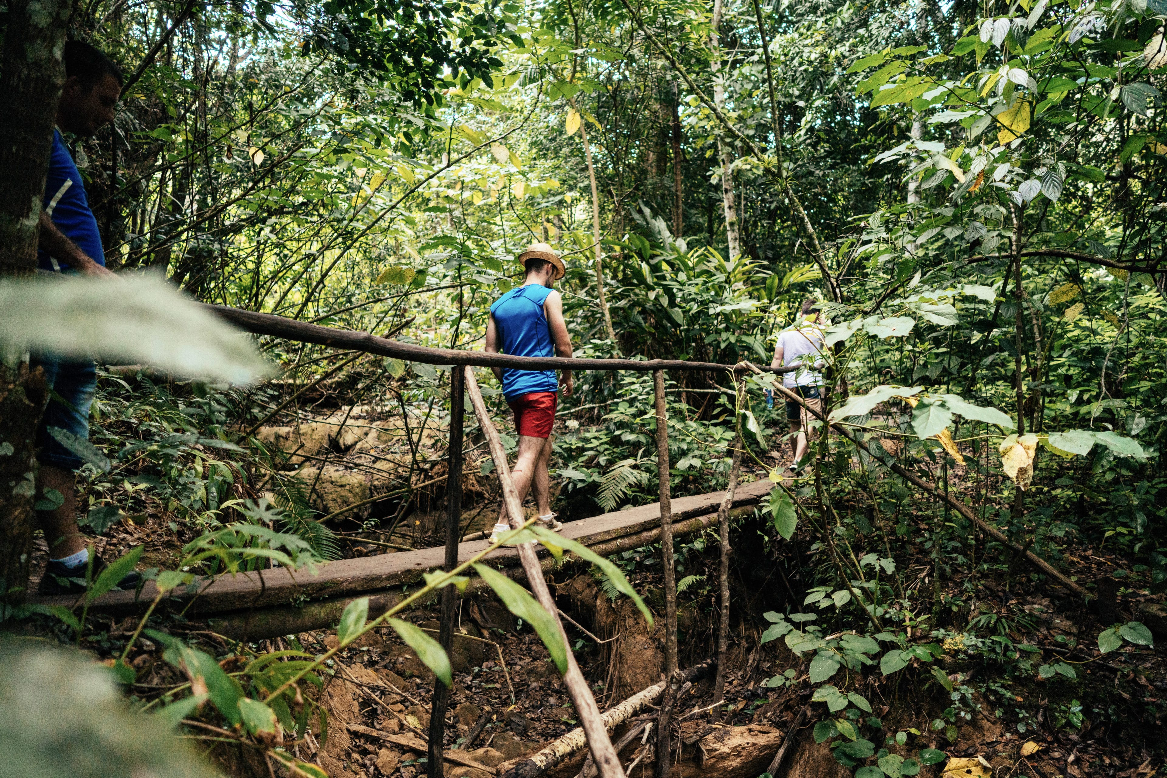 Cuba-Reisende wandern durch einen Nationalpark in Kuba