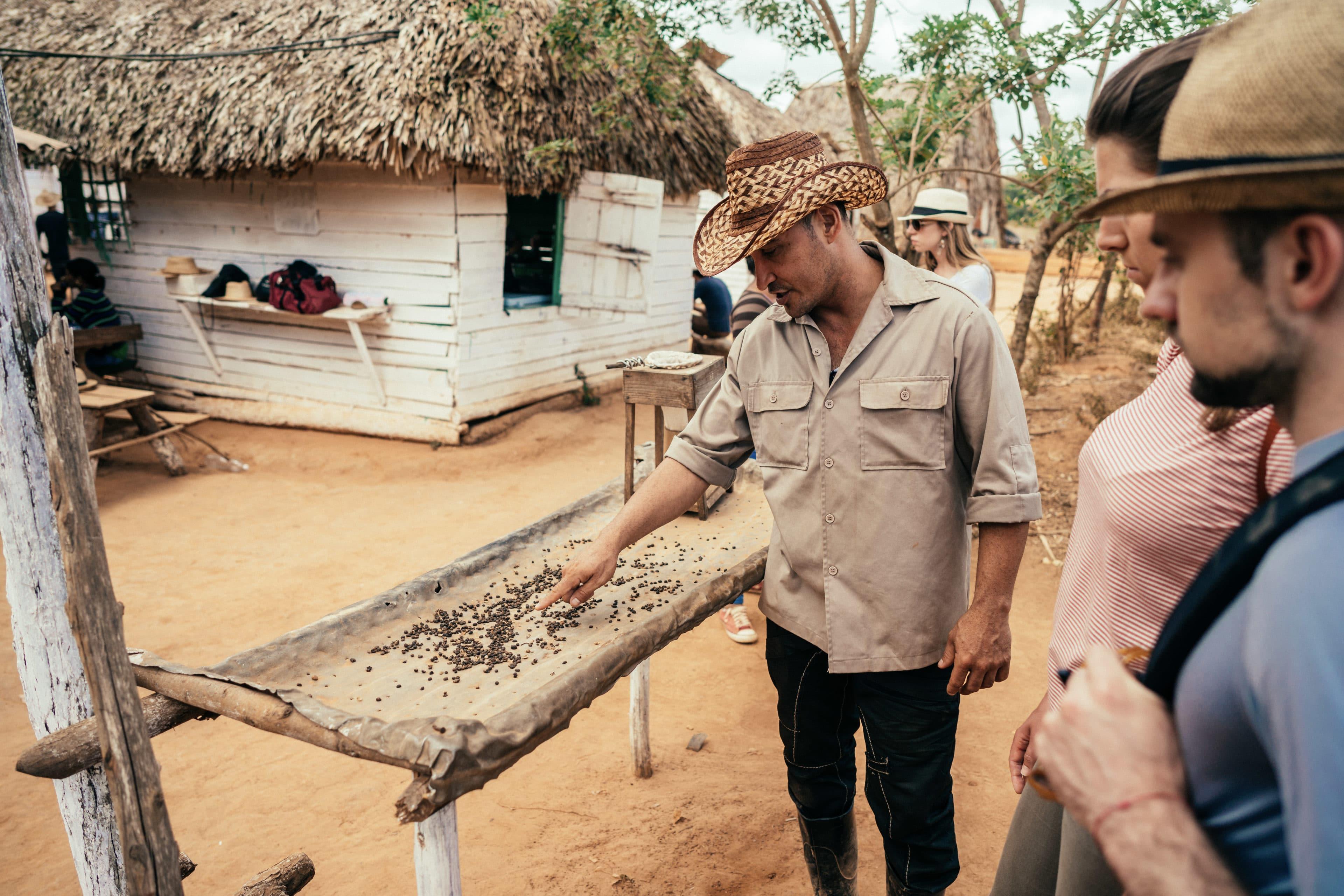 Kuba-Reisende erfahren von einem kubanischen Kaffeebauern etwas über Kaffeebohnen in Viñales