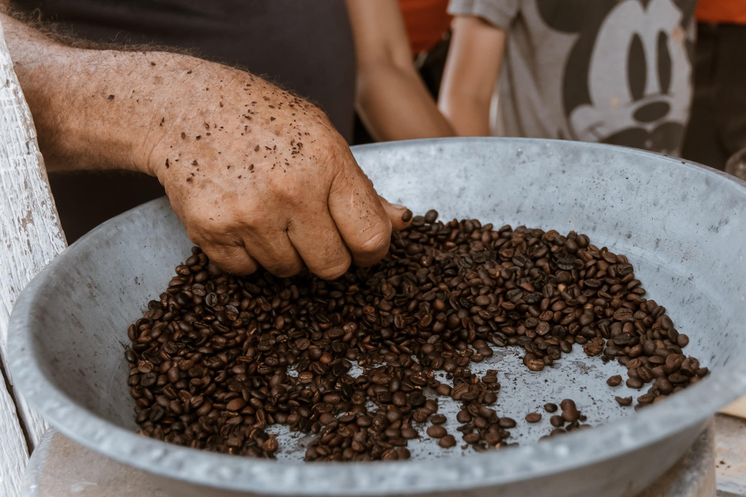 Frischer Kaffee direkt von den kubanischen Plantagen